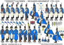 Tafel 350: Kurfürstentum/Königreich Sachsen: Husaren-Regiment 1791-1810