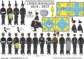 Tafel 175: Herzogtum Braunschweig: 1. Linien-Bataillon 1814-1815