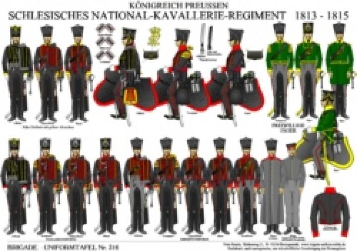 Tafel 316: Königreich Preußen: Schlesisches National-Kavallerie-Regiment 1813-1815